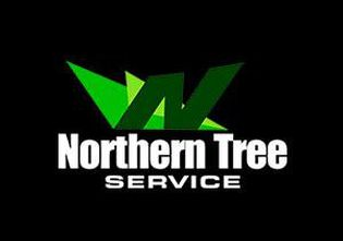 Tree and stump removal lopping and pruning service in adelaide