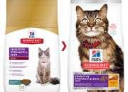 Buy Hills Science Diet Adult Sensitive Stomach & Skin Chicken & Rice Dry Cat Food Online