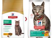 Hills Science Diet Adult Perfect Weight Chicken Dry Cat Food Online