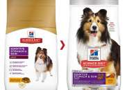 Buy Hills Science Diet Adult Sensitive Stomach & Skin Chicken Dry Dog Food Online