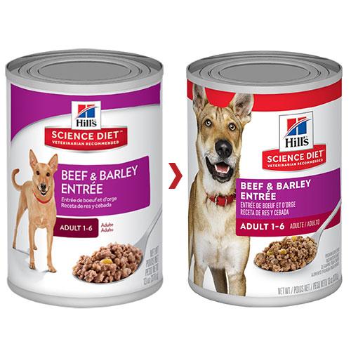 Buy hills science diet adult beef & barley entrée canned dog food 370 gm online