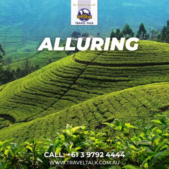 Now enjoy your holidays in sri lanka with our best packages