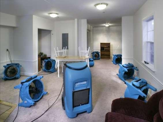 Best carpet cleaning service in australia