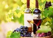 Get Affordable Winery Tours Melbourne Services