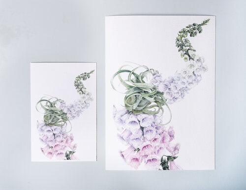 Other services — fine art photographic printing melbourne - matte image