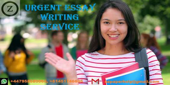 Urgent essay writing service | global assignment help | writing assignment help 24/7