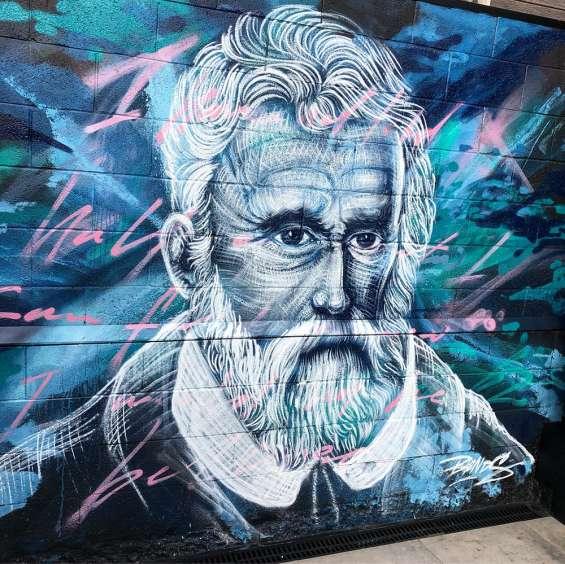 Professional melbourne's mural artist