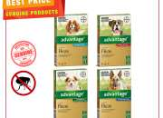 ADVANTAGE Monthly Flea Treatment for Dogs