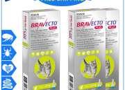 BRAVECTO PLUS Flea Heartworm Control for 1.2 to 2.8 Kg Cats