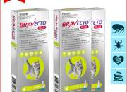 BRAVECTO PLUS GREEN for Cats 1.2 to 2.8 Kg Flea Heartworm Protection